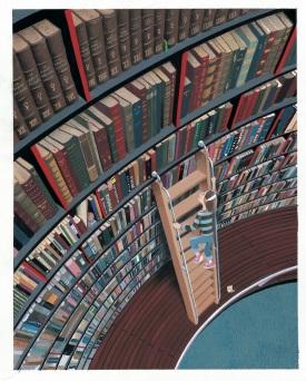 Volubilis_bibliothèque