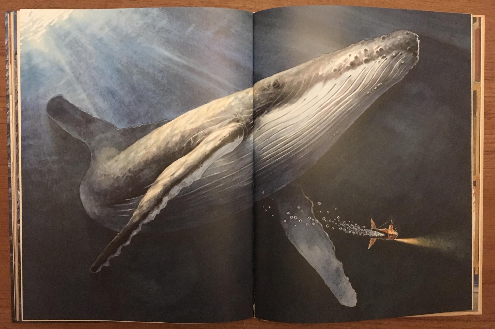 Edison_extrait baleine.jpg