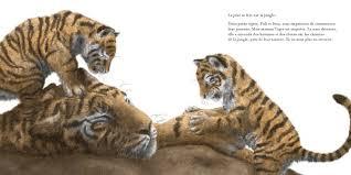 Petits tigres_extrait