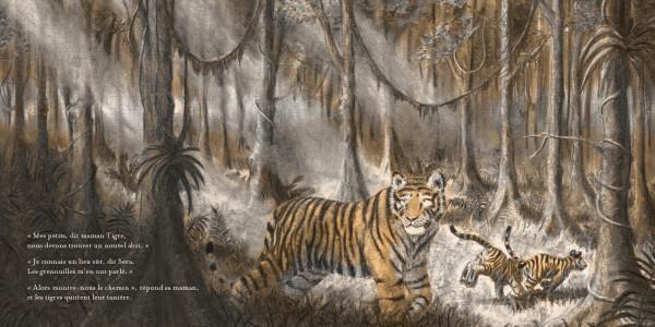 Petits tigres_extrait2